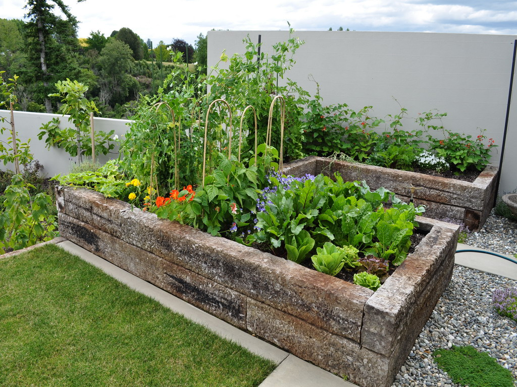 Edible garden for Edle gardinen